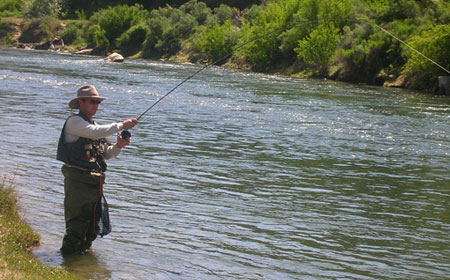 Public Water Fishing on the San Juan River, New Mexico
